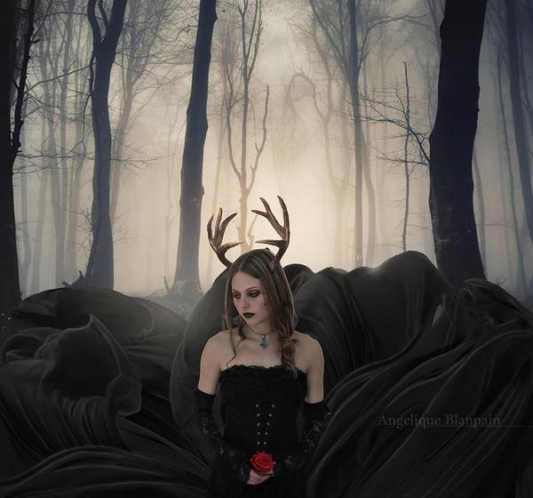 the red rose by Creamydigital