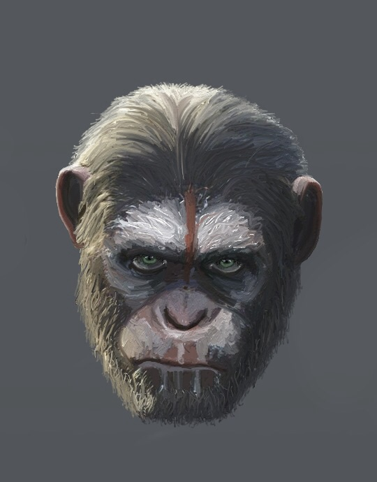 Dawn of the planet of the apes by dubz002