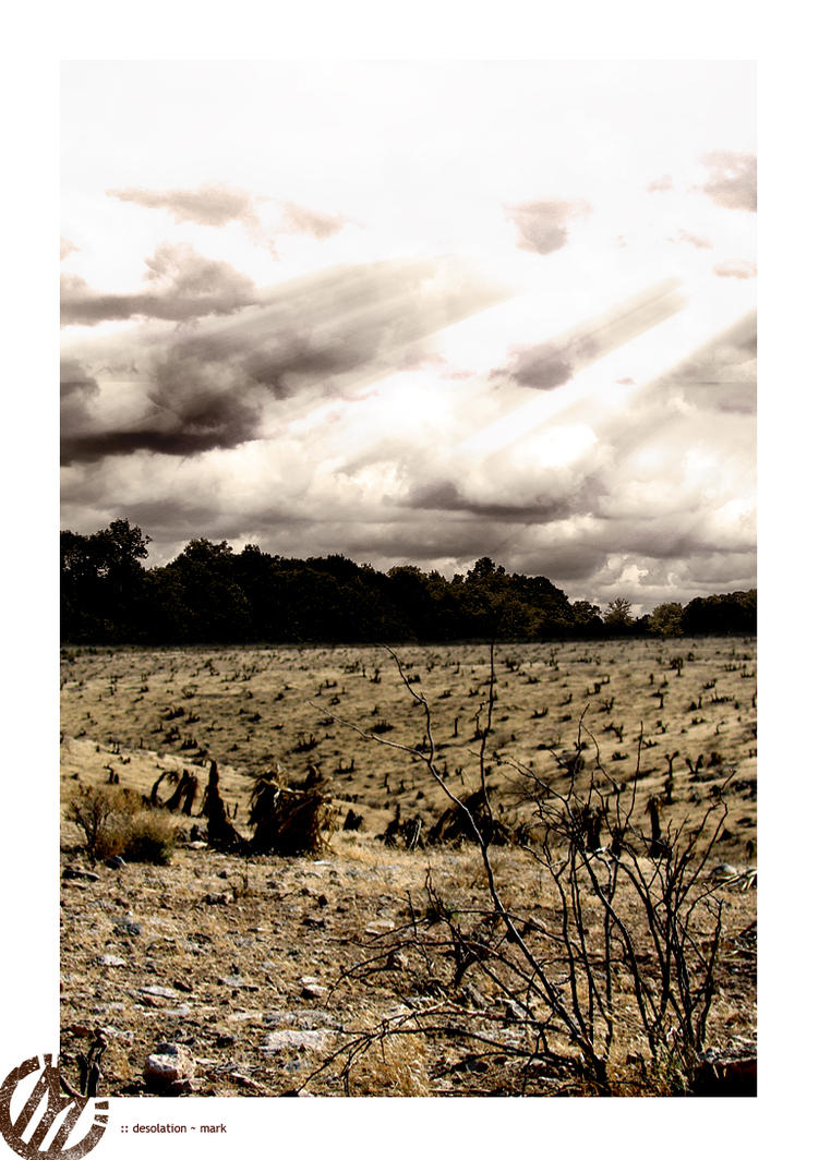 Desolation by mjerome