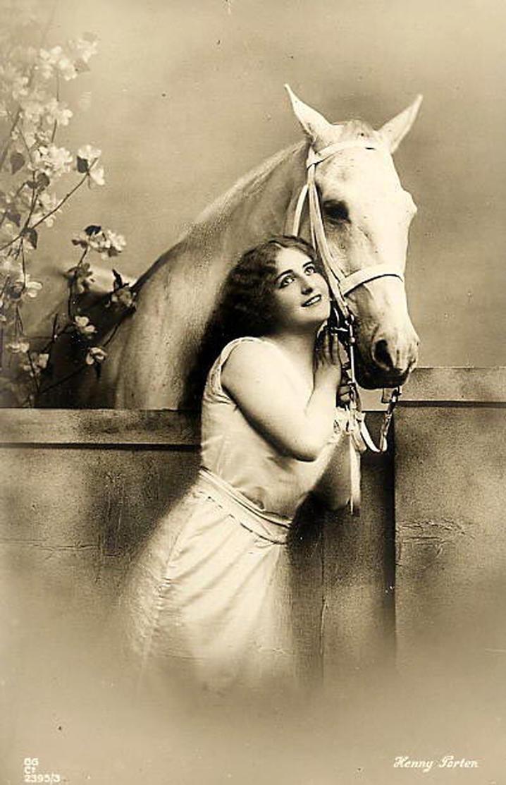 Horse 2 by GRANNYSATTICSTOCK