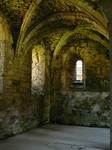 Vaulted Roof 4