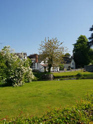 Grannysatticstock gardens