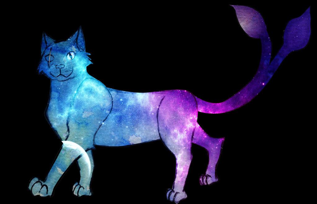 Gato by alejandroeljusto