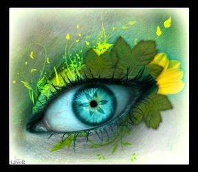 Natural Eye by LiNoR