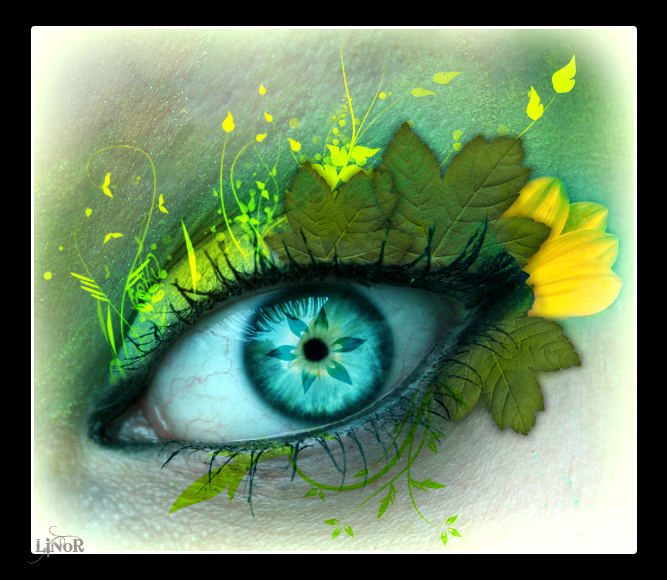 Natural Eye by LiNoR