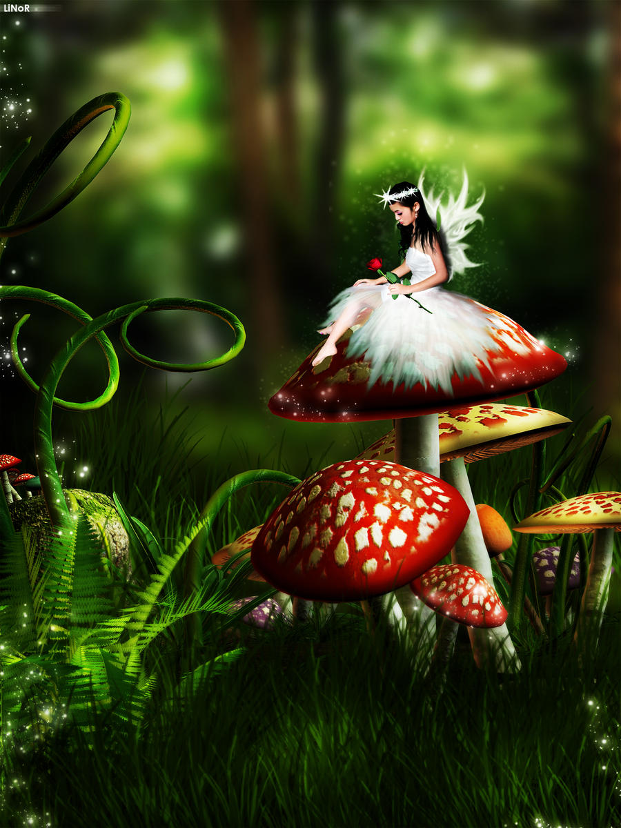 1000+ images about FAIRYTALE / SPROOKJESFOTO on Pinterest ...  1000+ images ab...