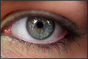 Macro Of MY eye by Narxx by LiNoR