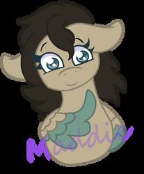 Maddies cute eyes -1 by PonyPainterMaddie