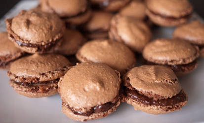 Macarons au chocolat 3of3 by Dimethil