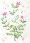 Flowers 20