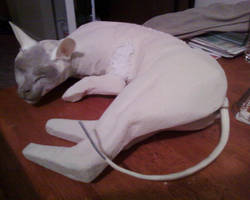 Cat Sculpture Form