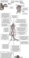 A Skeksis Anatomy Study  *Please read description*