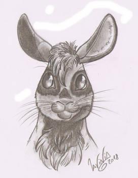Zurebunny sketch (commission bonus: head sketch)