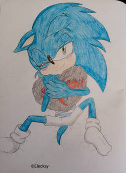 Sonic throwback 17