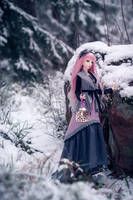 snowy path by amomiu