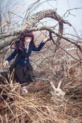 find the white rabbit ii