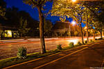 Kiseleff Boulevard