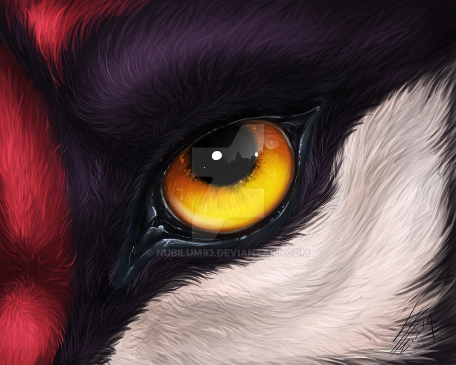 Eye in realistic style [Comm]