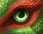 Dragon eye [Commission] by nubilum93