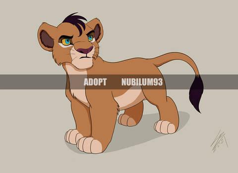 Lion cub Adopt - Auction (Open)