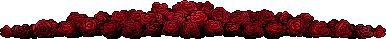 Red Roses Divider