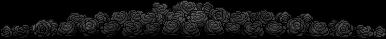 Black Roses Divider