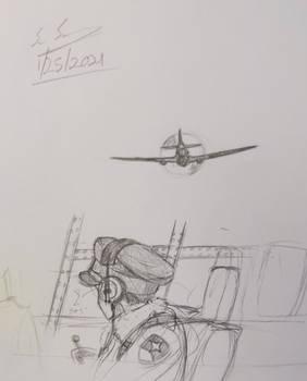 P-40 Patrol