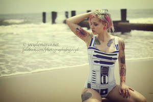 Sexy Star Wars: Vintage Artoo