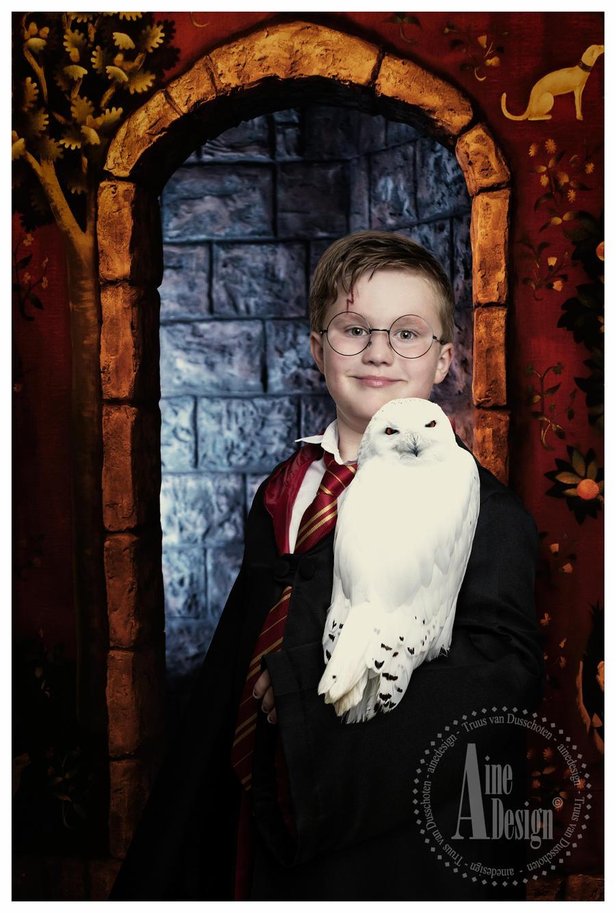 Harry Potter Part 3