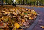 Autumn.Park.Silence