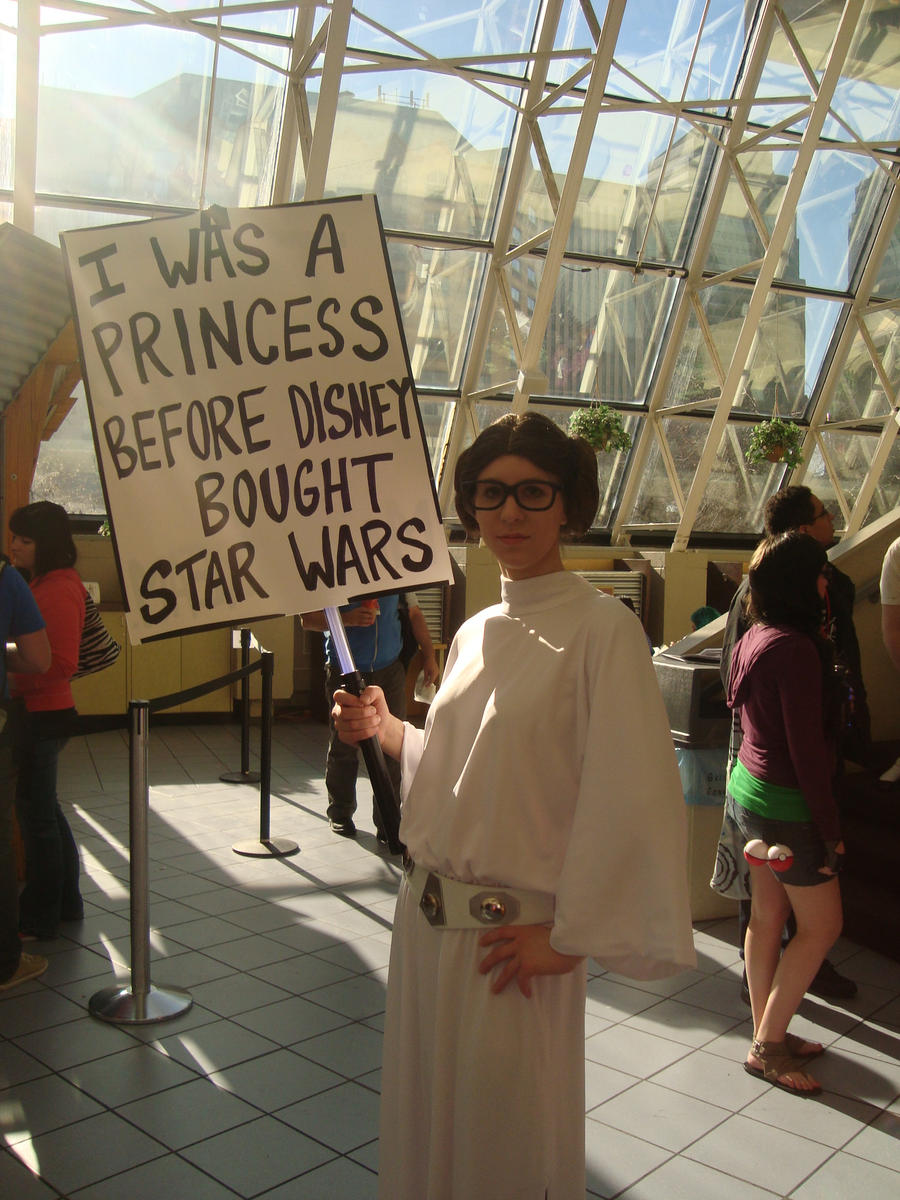 Ohayocon 2013 - Princess Leia by Kamara666