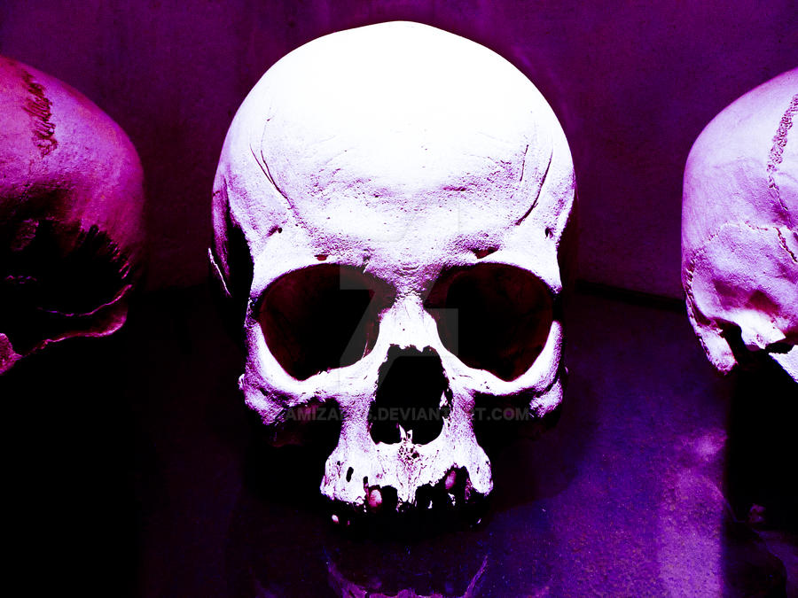 Purple Skull by Amizaras