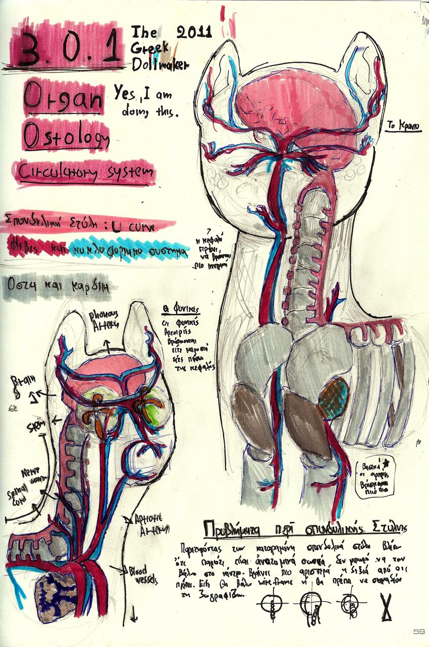 Medical studies 01 by TheGreekDollmaker