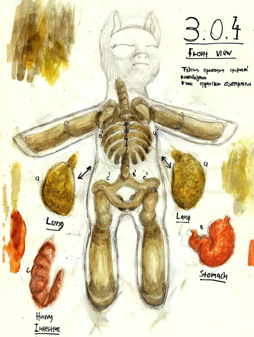 Medical studies 04 by TheGreekDollmaker