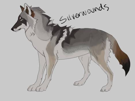 20 usd silver Brown puppy
