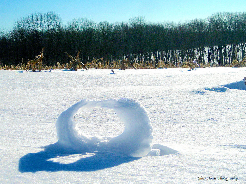Snow Roller by GlassHouse-1