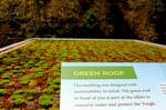 Green Roof by GlassHouse-1