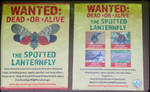 Wanted: Dead or Alive by GlassHouse-1