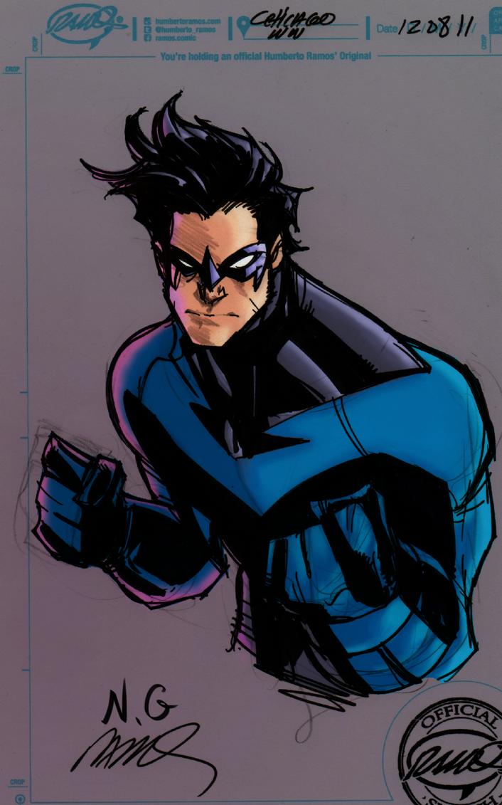 Nightwing by sokepy
