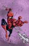 Spiderman by sokepy