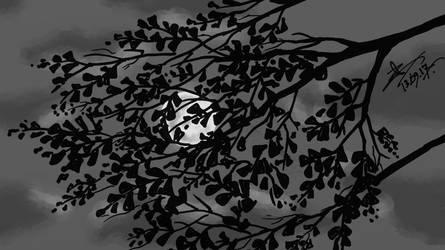 Chondreema (Moonlight) by mirazrahman
