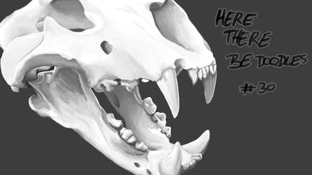 Here There Be Doodles #30 - Skull
