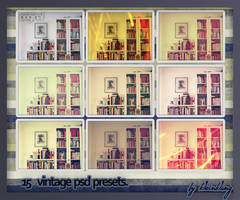 15 Vintage Psd Presets