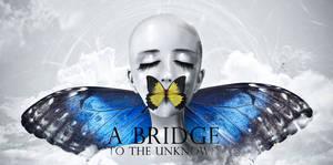 A Bridge to the Unknown