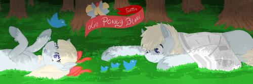 Le Poney Blanc banniere twitter by Zaldia-Mavi