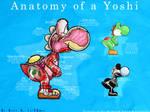 Anatomy of Yoshi