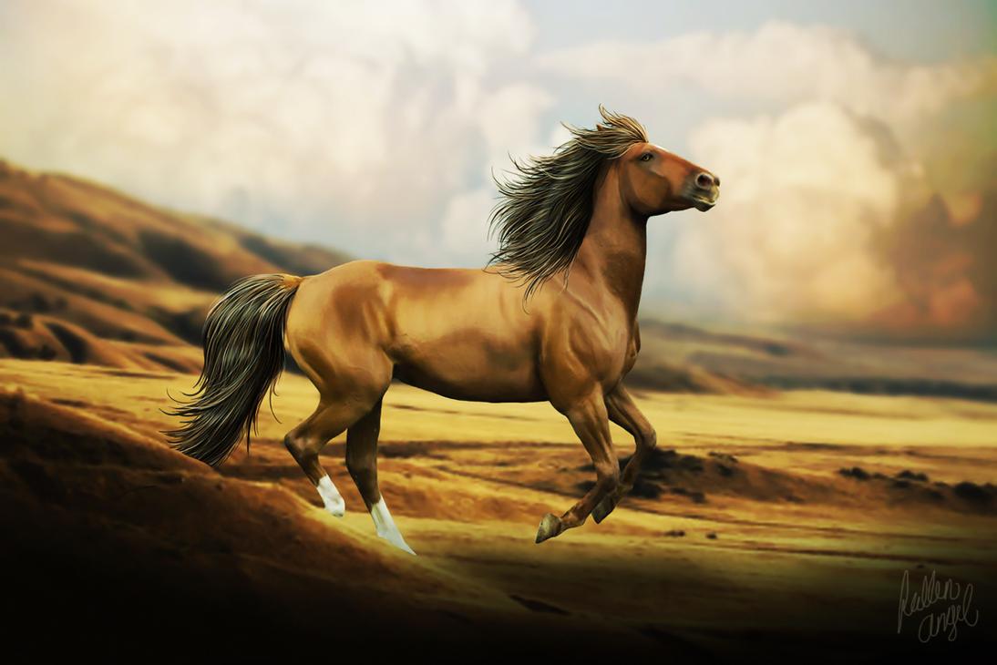Desert Miraj by hp-fallenangel