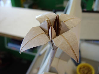 Flower in a Register by Edminster