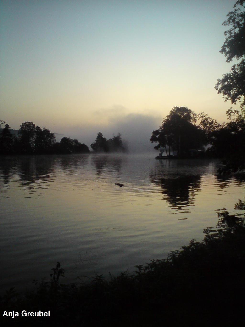 Un-Gewiss-Heit:Nebel