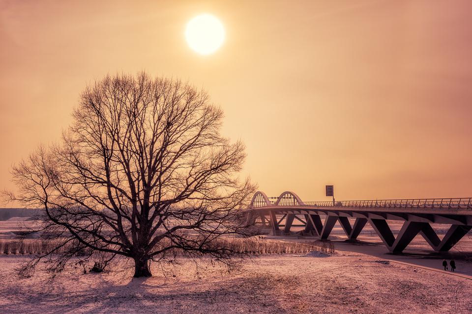 Winter Sun by hessbeck-fotografix